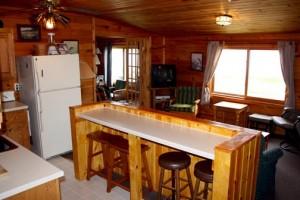 Grandview cabin bar